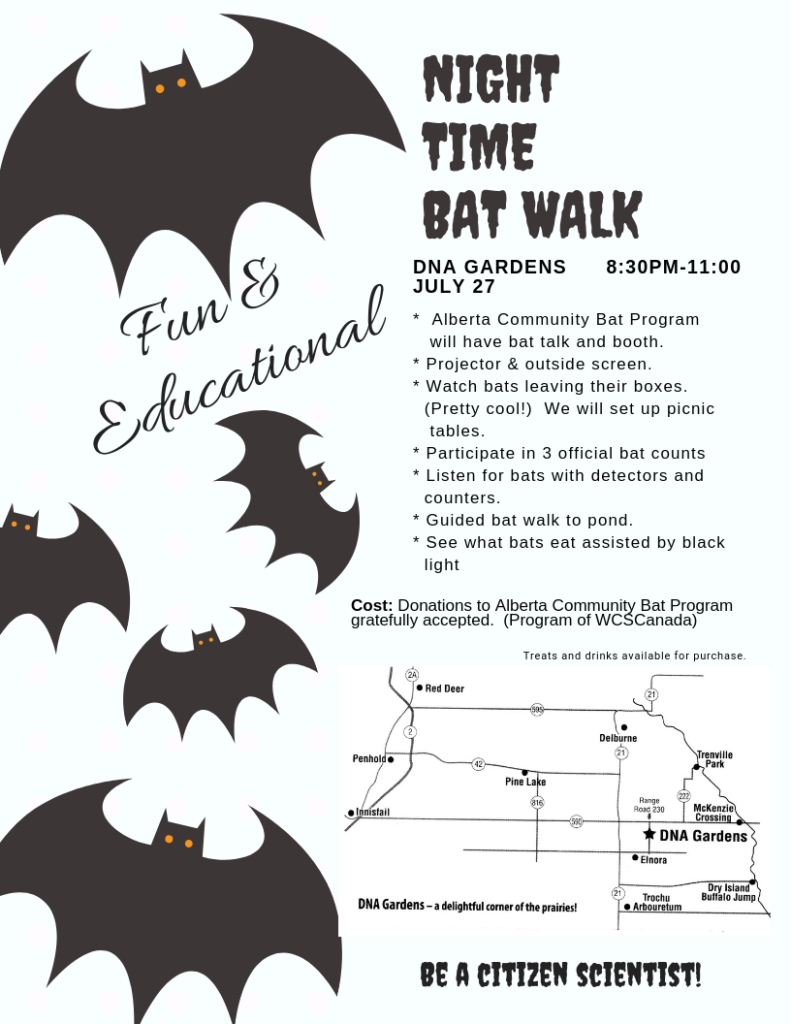 DNA Garden's Night Time Bat Walk @ DNA Gardens